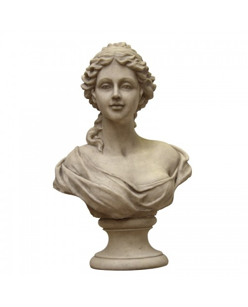 Veneros biustas