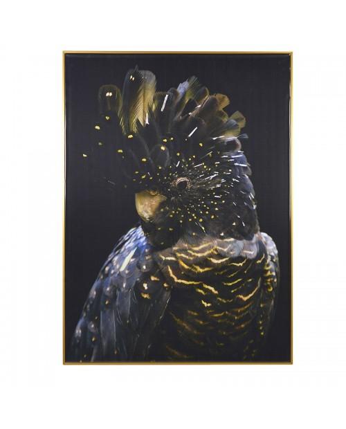 """Paveikslas """"Black Parrot"""""""