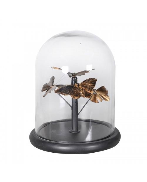 """Interjero dekoracija """"Butterflies In Glass Dome"""""""