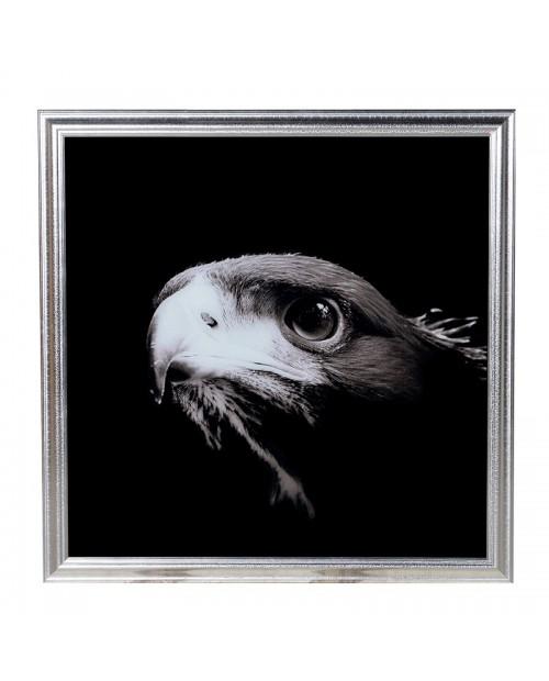 """Paveikslas """"Eagle"""""""