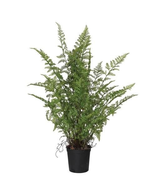 """Dirbtinis augalas """"Fern"""""""