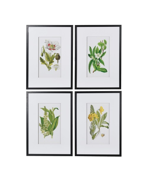 "Paveikslai ""Floral/Garden"" (4vnt)"