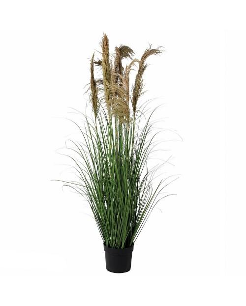 """Dirbtinė gėlė """"Pampas Grass"""""""