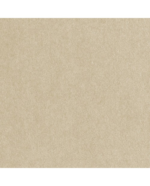 Glimmer Taupe tapetai