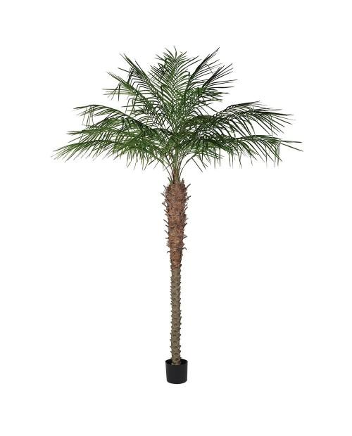 """Dirbtinis augalas """"Coconut"""""""