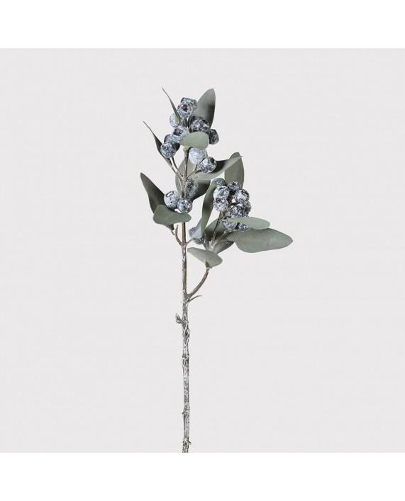 """Šakelė """"Eucalyptus Berry"""""""