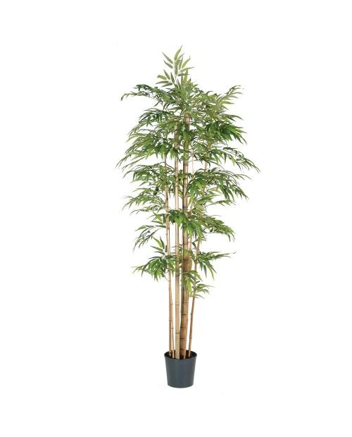 "Dirbtinis augalas ""Giant Bamboo"""