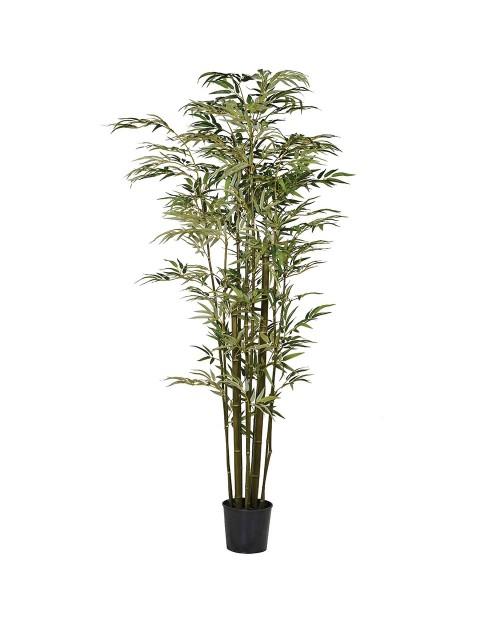 "Dirbtinis augalas ""Multi Stem Bamboo"""