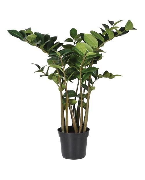 "Dirbtinis augalas ""Zamioculcus"""